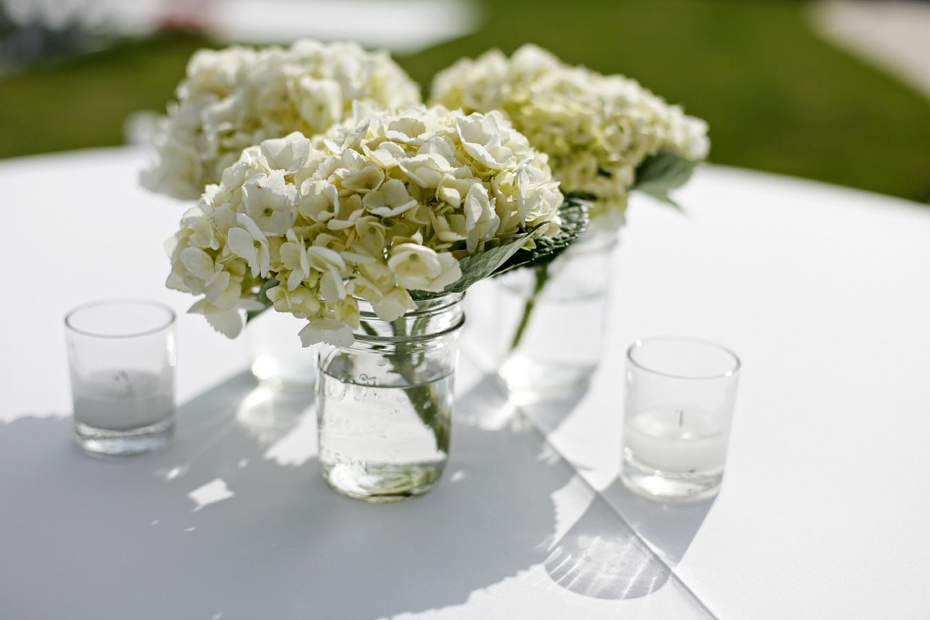 Amber Katrina, White flowers
