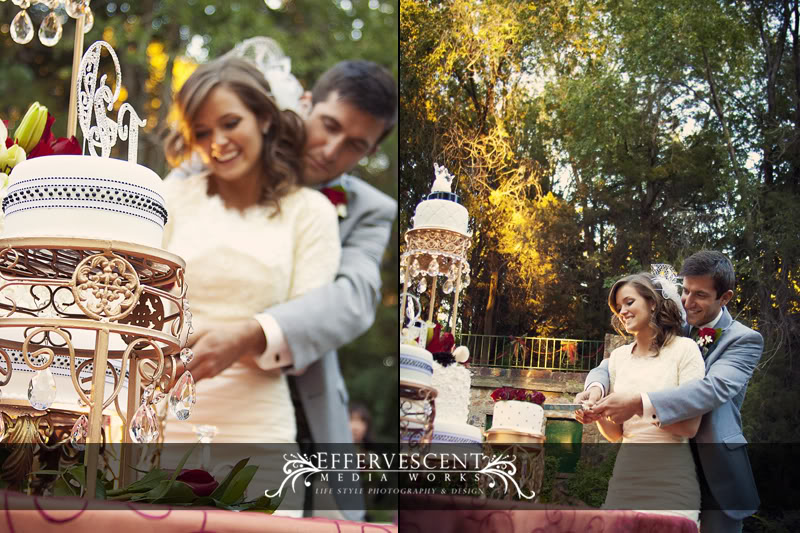Effervessence Media Works Cake Cutting LDS Wedding Receptions