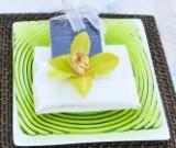 Napkin folding for LDS wedding receptions