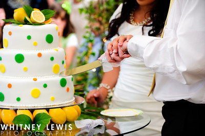 How To Cut Wedding Cake LDS Wedding Reception
