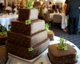 d-i-y wedding cake