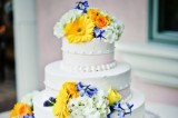 how to choose a cake decorator
